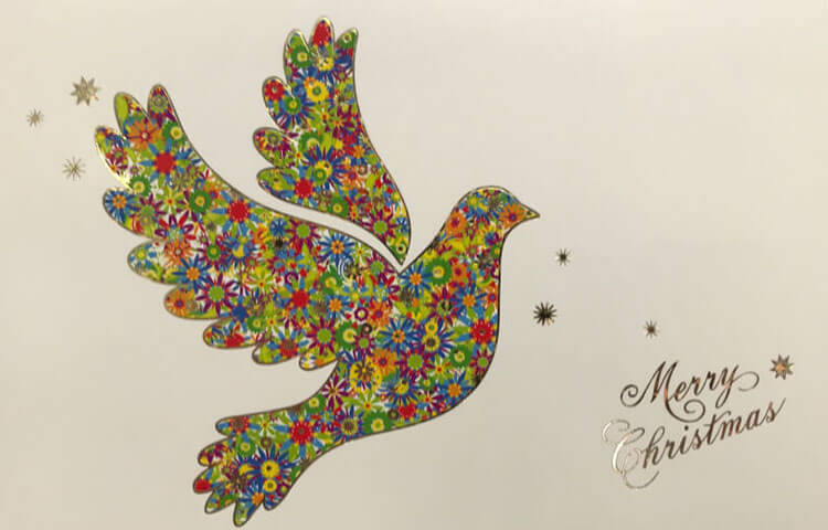 Charity Christmas Card Colourful Dove