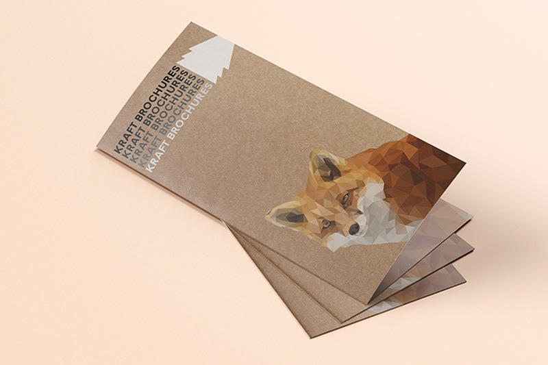 kraft brochures printing - bi-fold -sdp