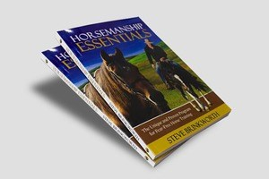 Soft Cover Perfect Bound Books - Same Day Printing
