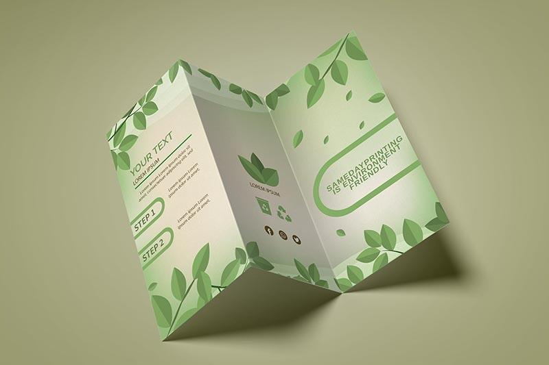 Z-fold Brochure Printing - SDP